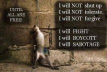 Animal abuse - Truth rebel I will boycott
